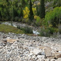 Crystal River Jeep Tour 201409 CO004