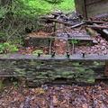 Abandoned Baldwin Mogul Locomotive BC CAN013