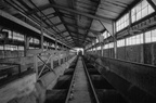 Kraftwerk Plessa 202009 BW DEU009
