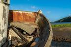 SS Point Reyes CA USA012