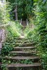 Waldsanatorium Schwarzeck 202006 DEU036