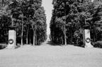 Sowjetisches Ehrenmal Schoenholzer Heide 202005 BW DEU010