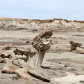 Bisti De-Na-Zin Wilderness 201404 NM001